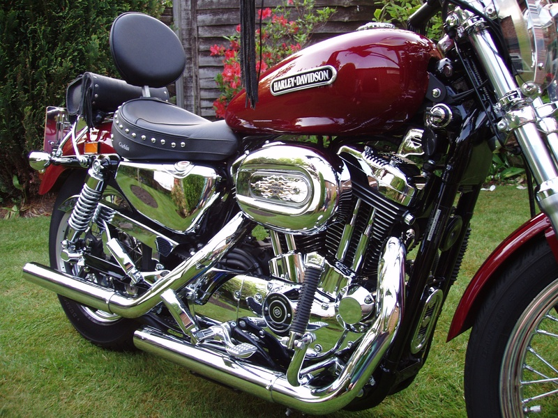 My Harley Davidson.